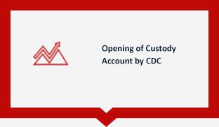 Custody Account